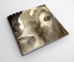 Square Notebook Printing